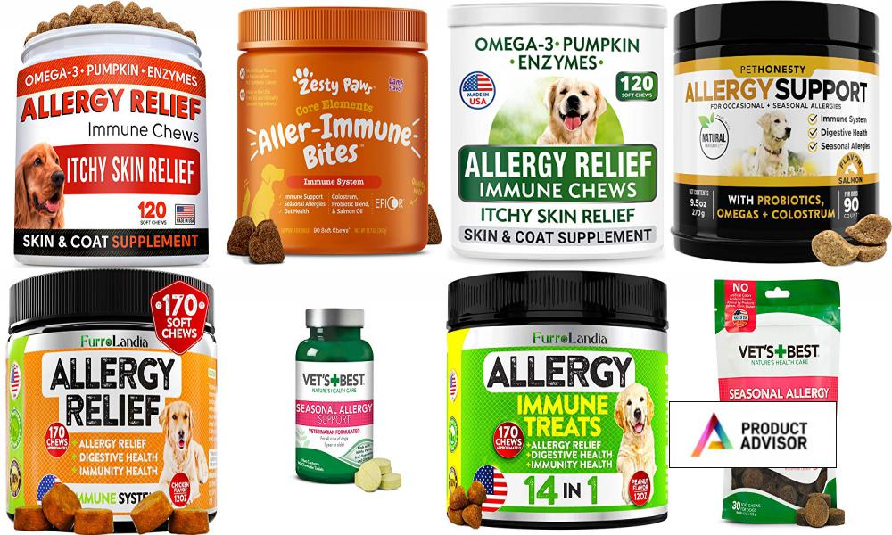 Best Allergy Relief For Dogs