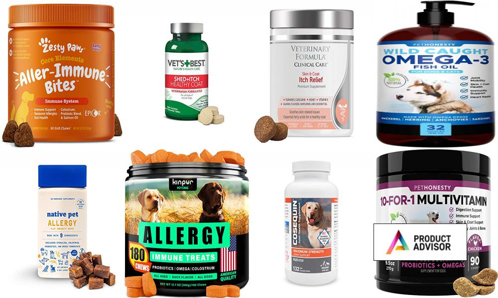 Best Apoquel Alternatives For Dogs