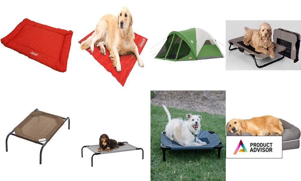 Best Coleman Dog Beds