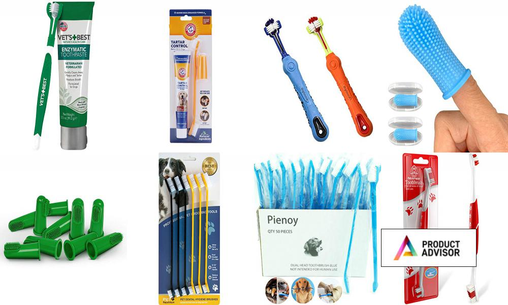 Best Toothbrushes For Dogs